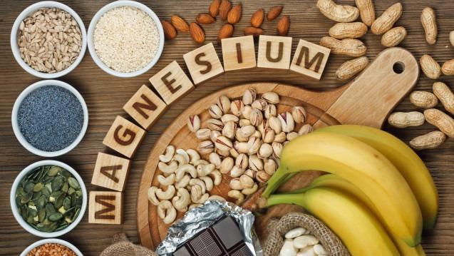 apport magnésium alimentation