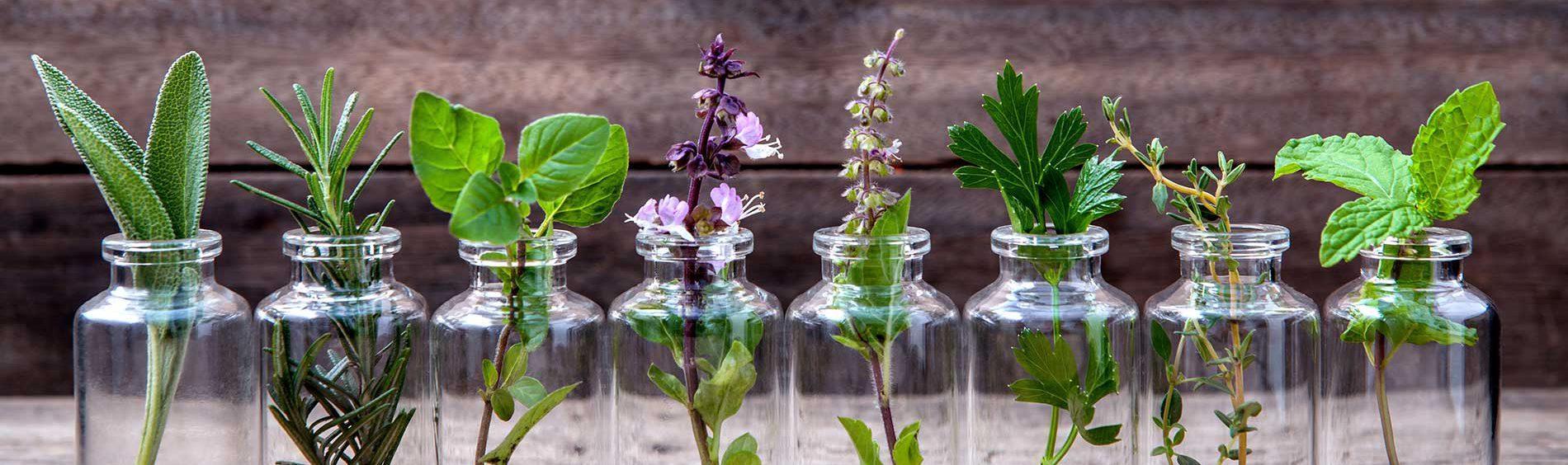 Aromathérapie, phytothérapie