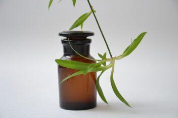 Photo de fiole de phytothérapie avec une plante médicinale