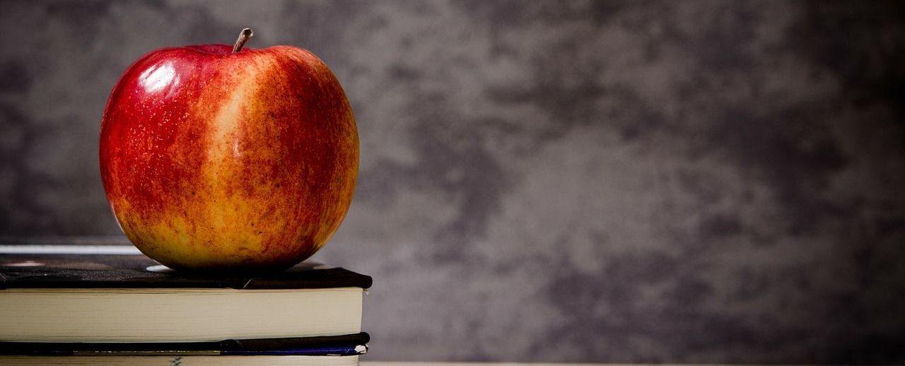 Photo d'une pomme posé sur d'elle livre, elle brille de mille feux !